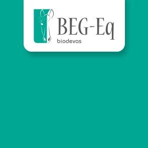 BEG-EQ